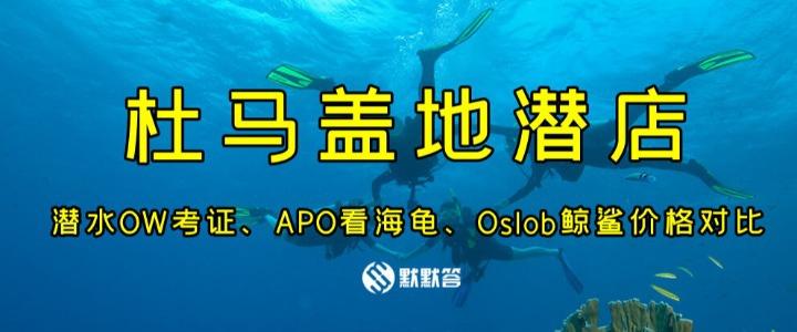 潜水 | 来杜马盖地学潜水或跳岛游,大家推荐找哪家潜店?