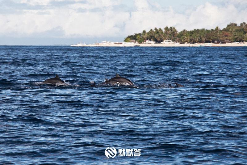 帕米拉坎岛,帕米拉坎岛,Pamilacan Island