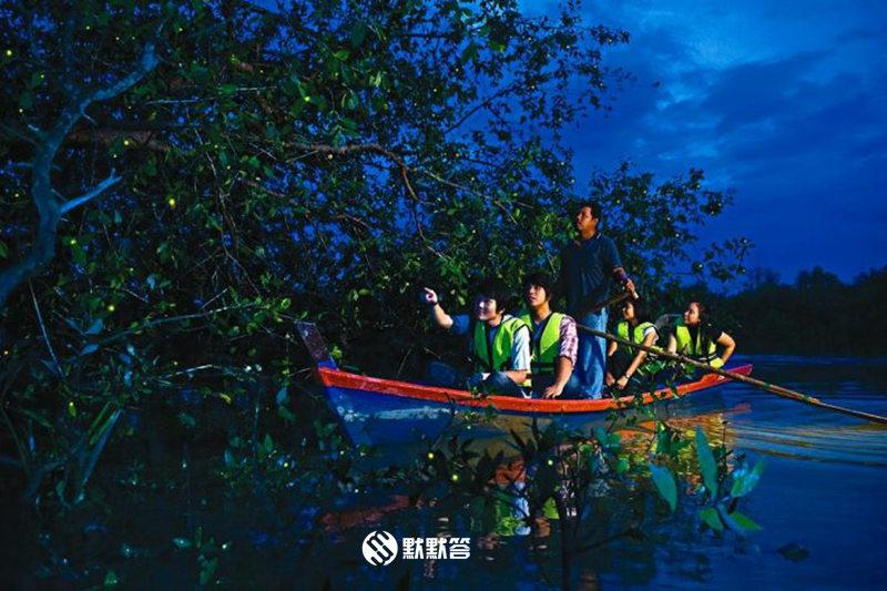瓜拉雪兰莪萤火虫,瓜拉雪兰莪吃海鲜+看萤火虫,Kuala Selangor fireflies