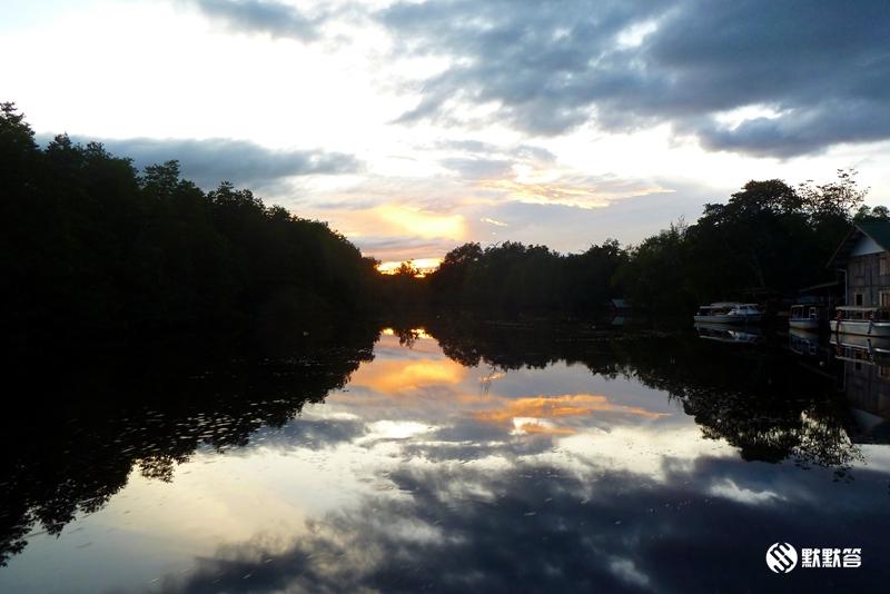 萤河红树林,萤河红树林,Binsuluk river cruise