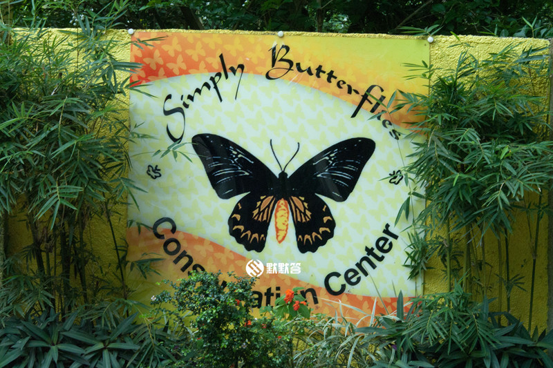薄荷岛蝴蝶园,薄荷岛蝴蝶园,Habitat Butterflies Conservation Center