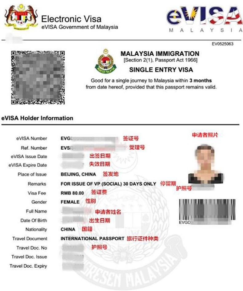 马来西亚旅游签证,马来西亚旅游签证该办哪一种?,Malaysia tourist visa